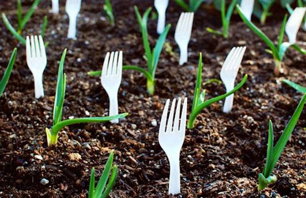 garden-hacks2