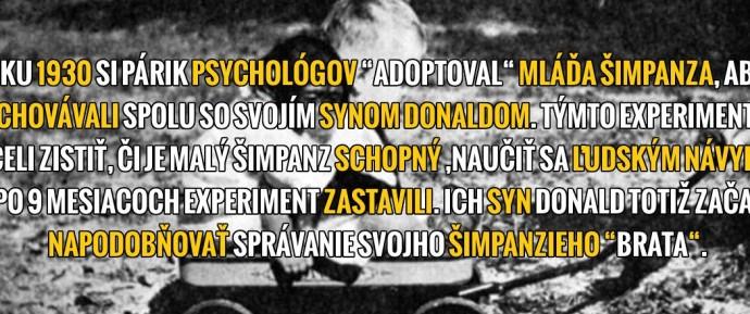 prezentacny3
