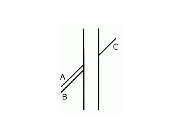 Kam pokračuje čiara C?