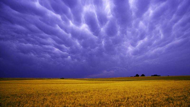 4. Štát Iowa je známy prevažne poľnohospodárskou výrobou a krásnou prírodou. Hlavným a najľudnatejším mestom tohto štátu je: