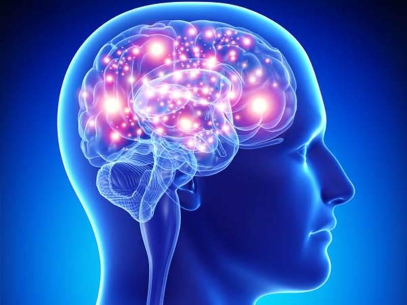Koľko percent vody obsahuje mozog?
