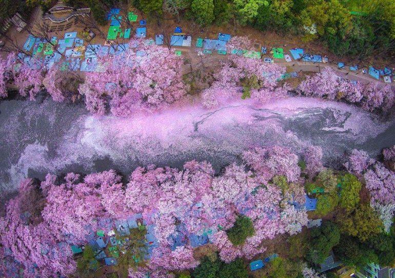 tokyo-rieka