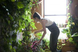 moderne zahradkarcenie