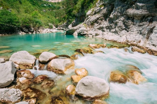 Grisha Bruev / Shutterstock