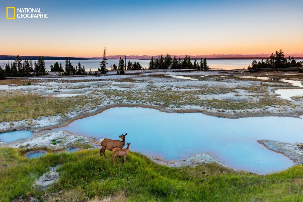 national-geographic-4