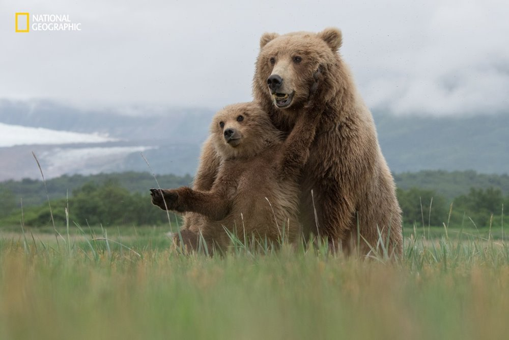 national-geographic-7
