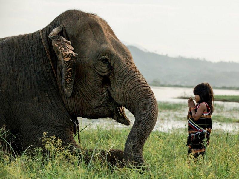 thajsko kmene 15