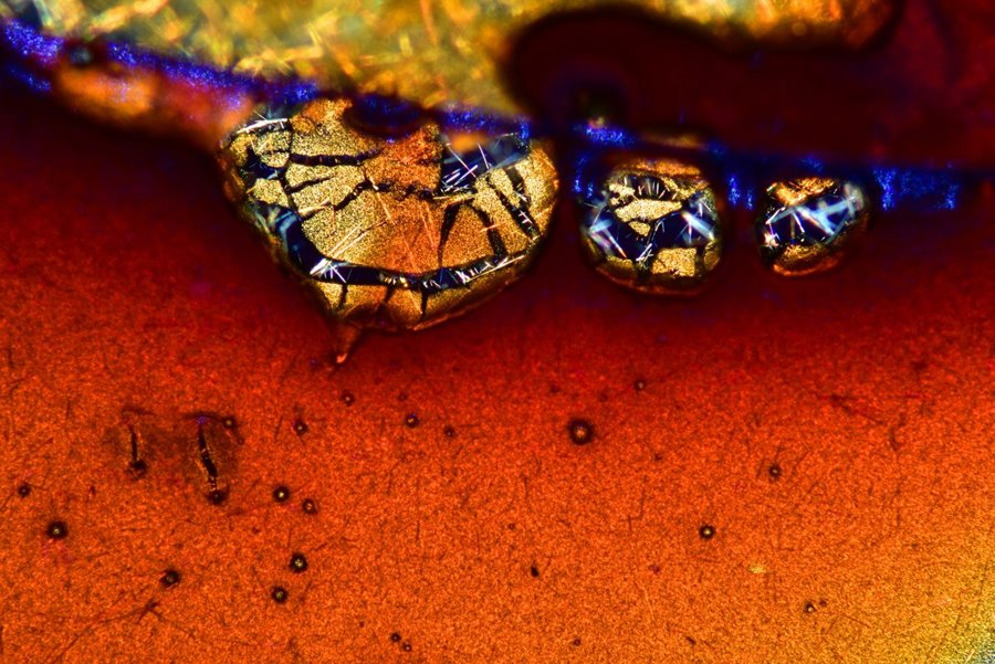 mikroskopicke-zabery-13