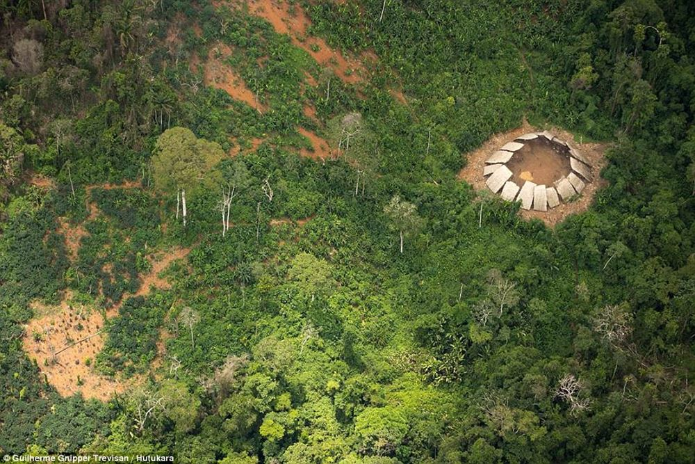 http://www.dailymail.co.uk/news/article-3946254/The-incredible-moment-Amazon-tribe-untouched-civilization-stare-wonder-photographer-s-plane-flying-them.html?ito=social-facebook