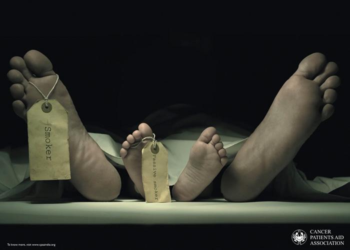 fajcenie-antikampan13