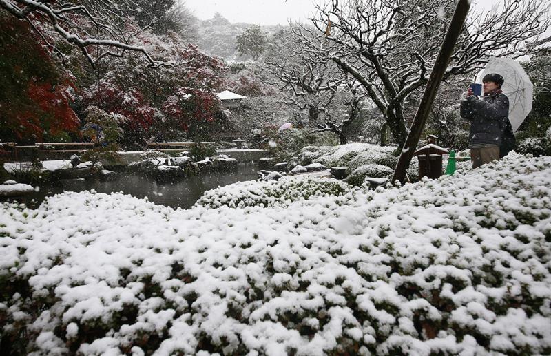 EBE 16 Kamakura - Na snímke návštevník fotografuje sneh v chráme v japonskom meste Kamakura neïaleko Tokia 24. novembra 2016. Obyvatelia japonského hlavného mesta Tokio sa dnes ráno zobudili do prvého novembrového sneženia za posledných vyše 50 rokov. FOTO TASR/AP A visitor takes a photo in the snow at the Hase temple in Kamakura, near Tokyo, Thursday, Nov. 24, 2016. Tokyo residents woke up Thursday to the first November snowfall in more than 50 years. (AP Photo/Shizuo Kambayashi)
