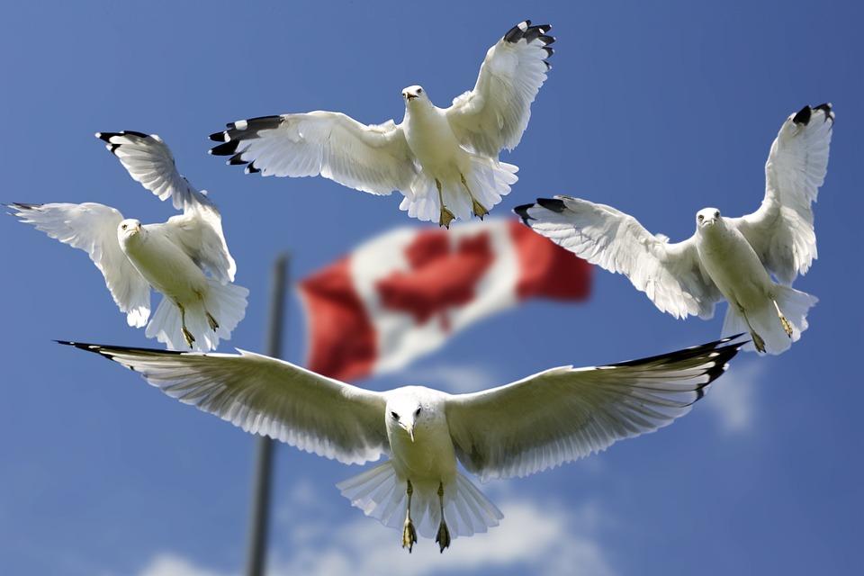 Aké je hlavné mesto Kanady?