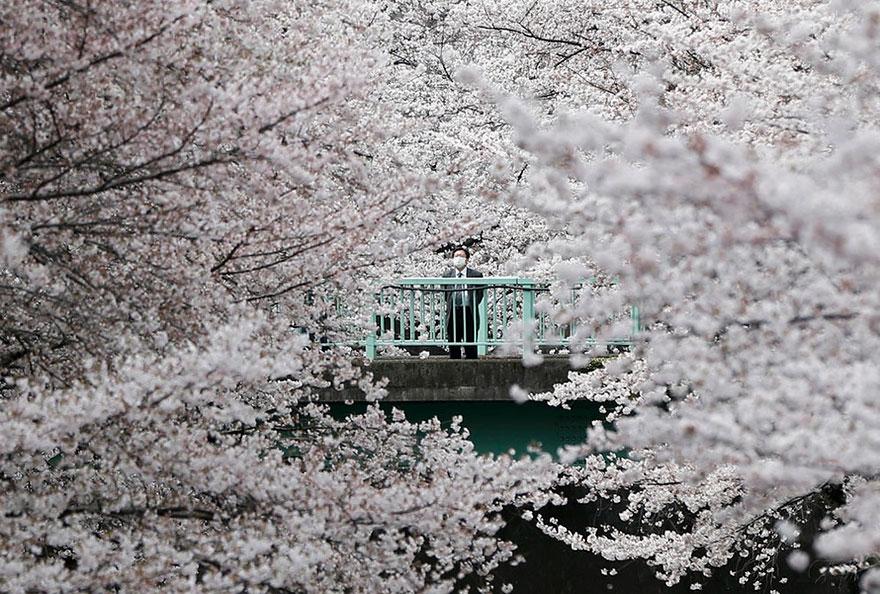Issei Kato / Reuters