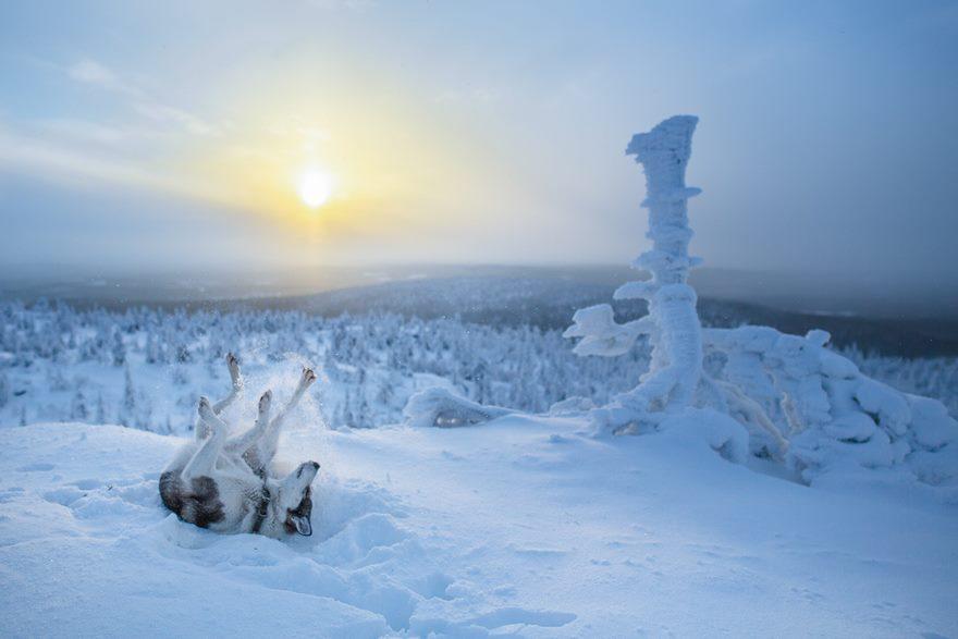 finsko-lapland13