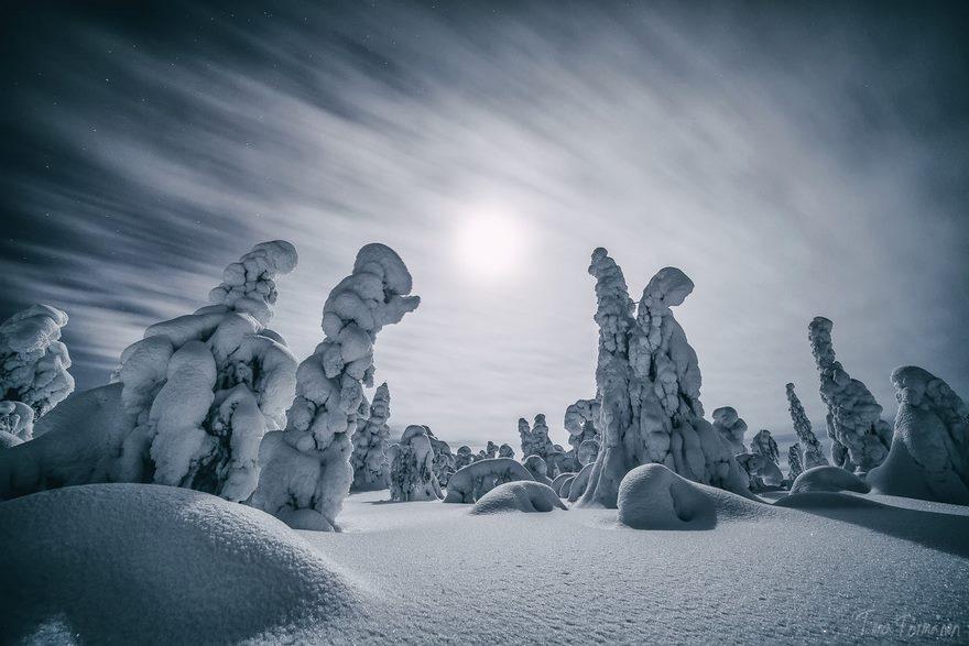finsko-lapland14