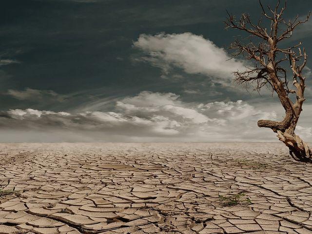 Kde sa nachádza najsuchšie miesto našej planéty?