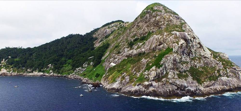 snake-island