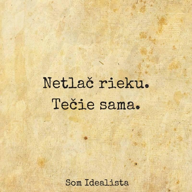 som-idealista-93