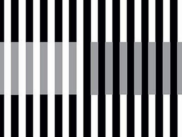 Ktoré pásiky sú belšie?