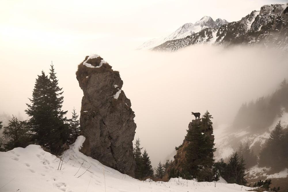 v-oblakoch4