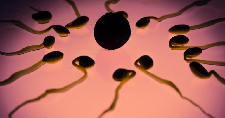 Dočkáme sa konečne mužskej antikoncepcie? Indickí vedci dokončujú klinické testovanie