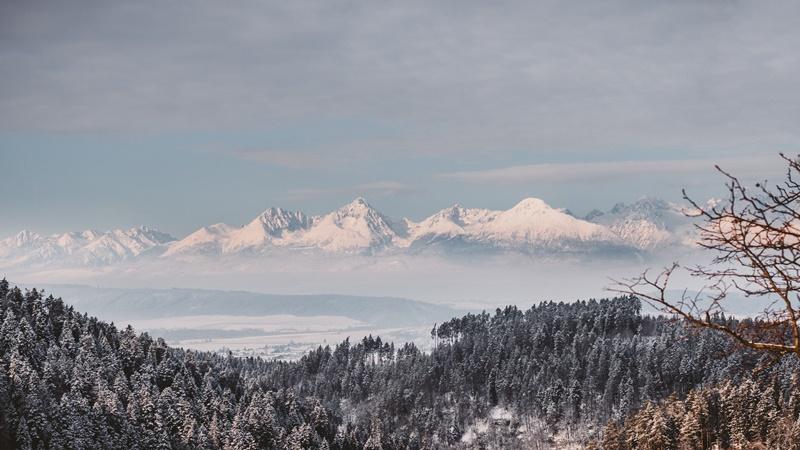 Pohľad na Vysoké Tatry