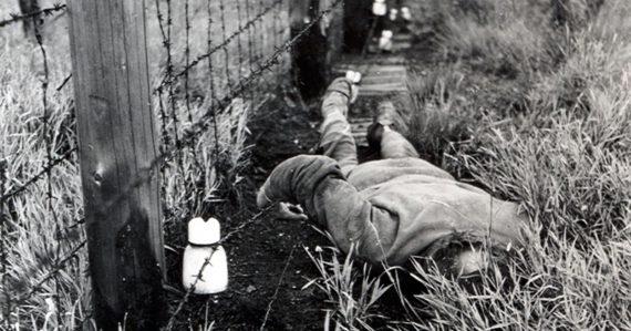 Chýbalo mu 20 metrov a bol by na slobode. Študenta dotrhali a oskalpovali psy na hraniciach v Bratislave