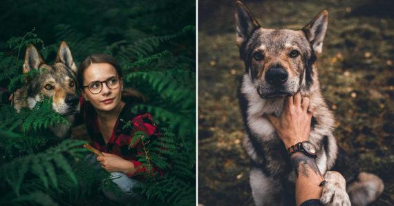 Kvôli psovi odišiel z práce. Tomáš sa stará o vlčiaka Orca, ktorého sleduje na Instagrame 40-tisíc ľudí