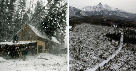 Za jedno popoludnie zmizlo 12.600 ha lesa. Vietor s rýchlosťou 230 km/h premenil Tatry na mesačnú krajinu