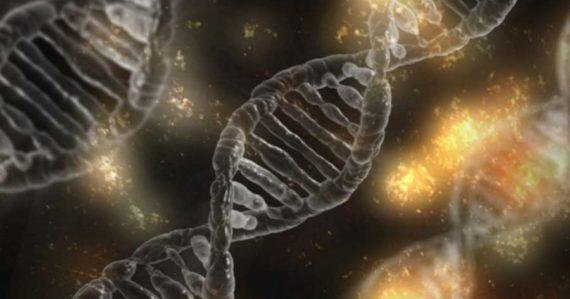 Čínski vedci sa pokúsili geneticky modifikovať dvojičky. Tajný experiment nevyšiel podľa predstáv
