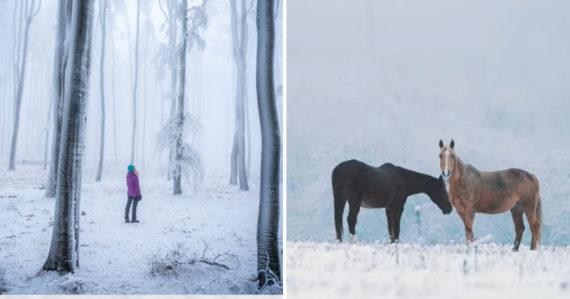 Mladý Slovák zachytil Malé Karpaty ako nikto iný: Jedinečné video, ukazuje krásne zasneženú krajinu
