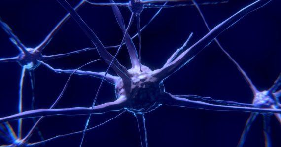 Uvidíme naživo komunikáciu v našom mozgu? Vedci vyvinuli kameru s rýchlosťou 1 bilión záberov za sekundu