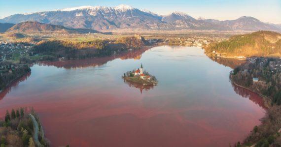 Bledské jazero je v ohrození. Sinice ho zafarbili na červeno