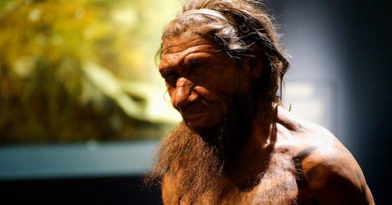 Ľudia a neandertálci sú si bližší ako polárne a hnedé medvede. Nová analýza DNA naznačuje kríženie druhov
