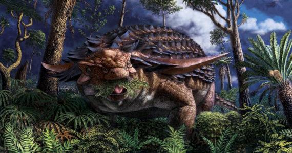 Zistili, aké bolo jeho posledné jedlo. Archeológovia preskúmali žalúdok obrneného dinosaura