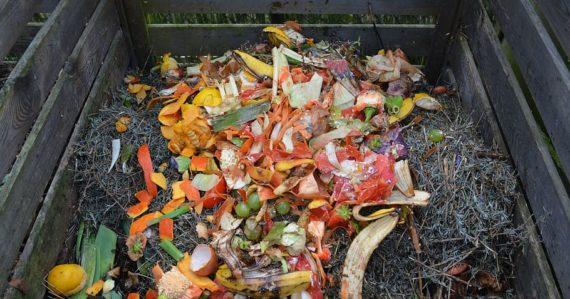 Domácnosti čakajú zmeny. Zber kuchynského odpadu bude od budúceho roka povinný