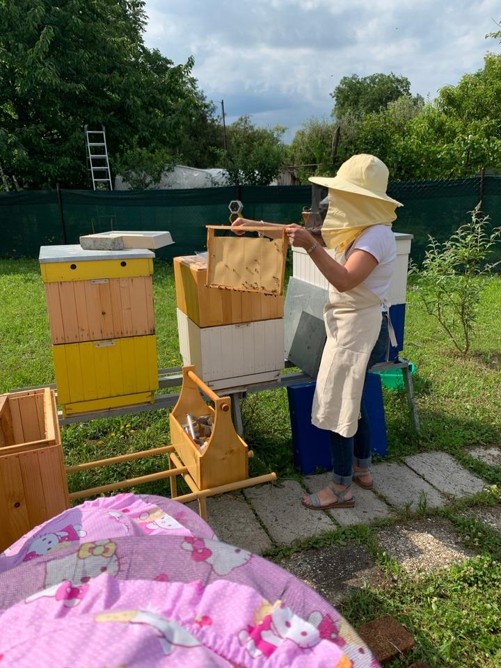 Včelárstvo Gajdel