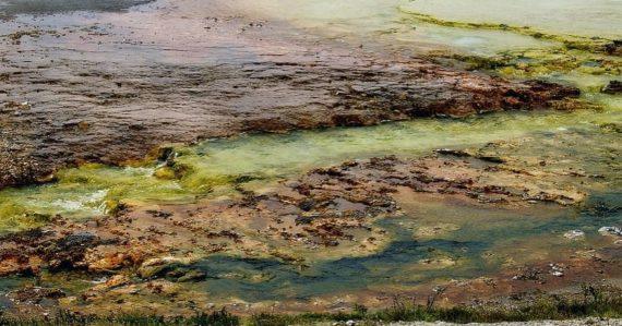 Čo dýchali organizmy, keď na Zemi ešte nebol kyslík? Vedci majú konečne odpoveď