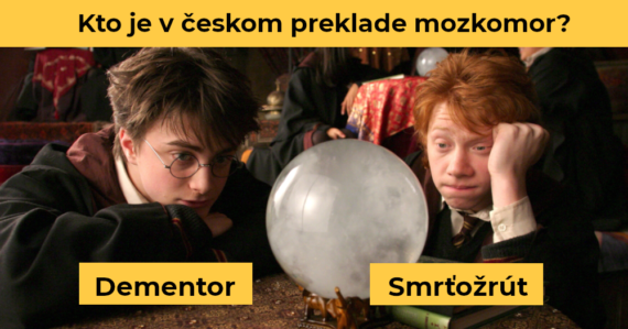 Kvíz, ktorý zvládne len ozajstný fanúšik Harryho Pottera. Ako dobre poznáte pojmy z českého prekladu slávnej ságy?
