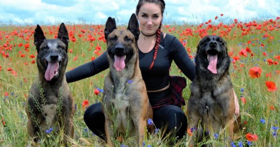 Kynológovia Peter a Dominika radia, ako vychovávať psa: Najhoršie je potrestať ho až potom, keď k nám príde