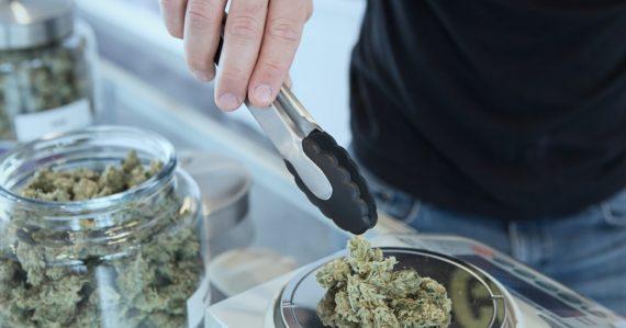 Legalizácia marihuany má zaujímavý vedľajší efekt. Štúdia zistila, že zvýšila predaj týchto produktov