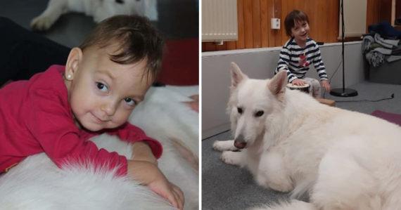 Tamarke bojujúcej s vážnymi diagnózami pomáha psík Timo. Stojí pri nej počas rehabilitácií, aj v bežnom živote