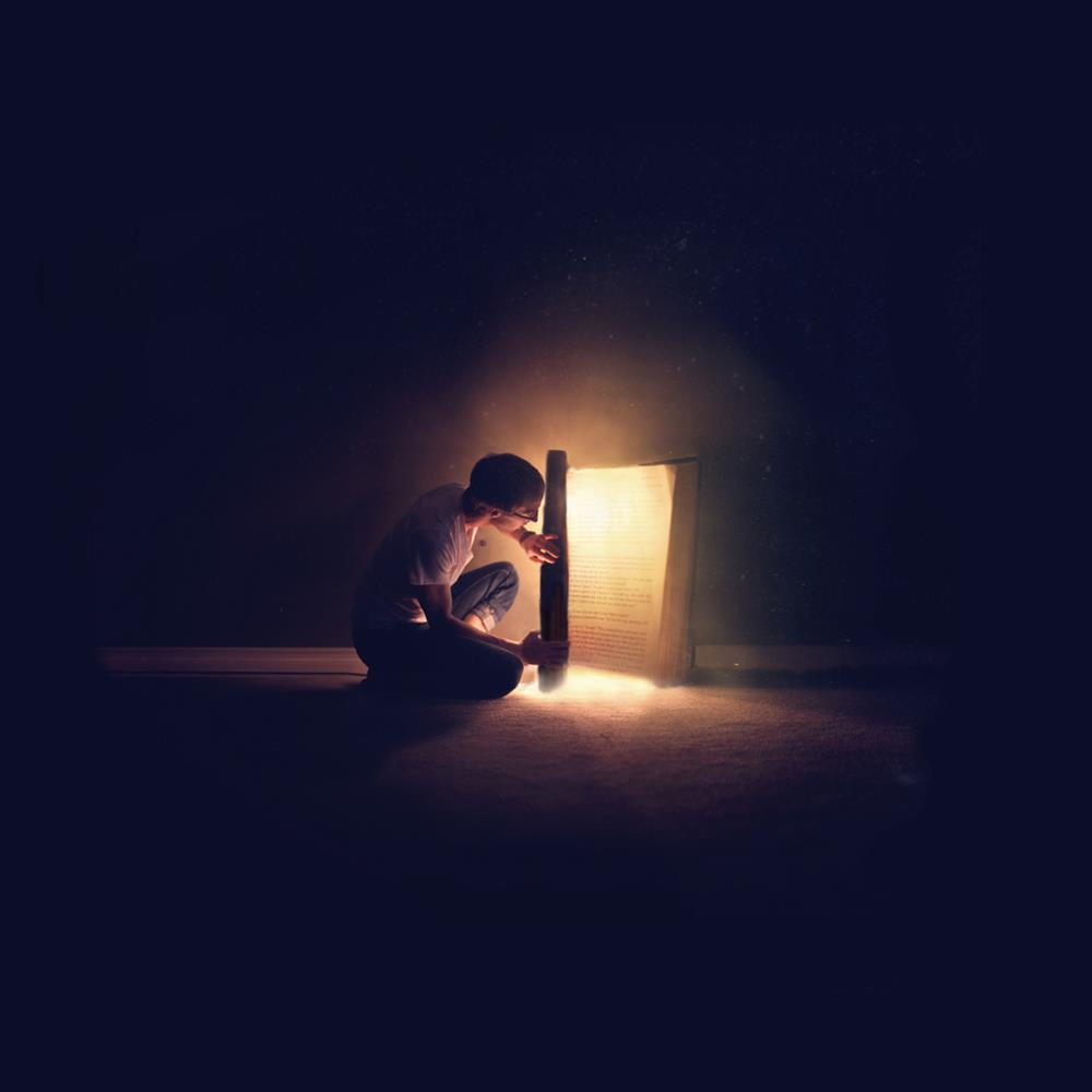 nočné sovy1